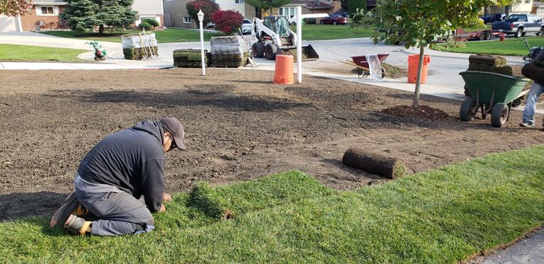 Sod Installation - Pacocha Landscaping Services