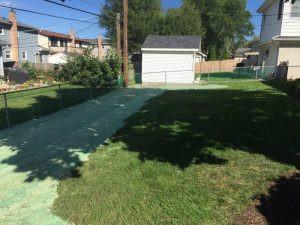 pacocha-rear-of-back-yard-lawn-repair-seed-germination-blanket