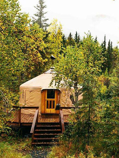 20' Yurt In The Trees