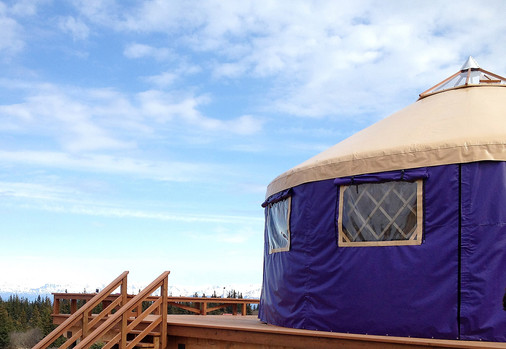 Purple Sidewall