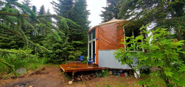 20' Yurt On Kneewall