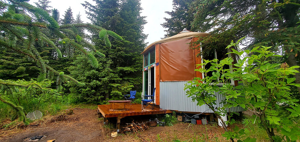 nomad shelter alaskan yurt portable structure in the forest