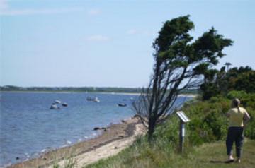 Break on Nantucket