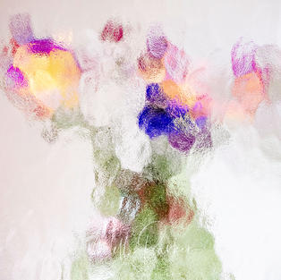 Abstract Floral 5