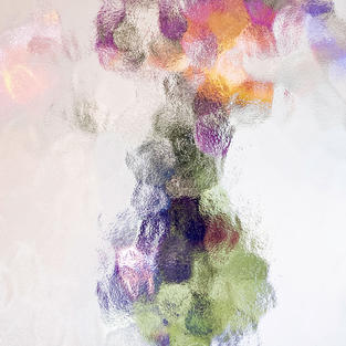 Abstract Floral 1