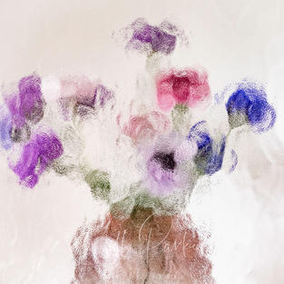 Abstract Floral 4
