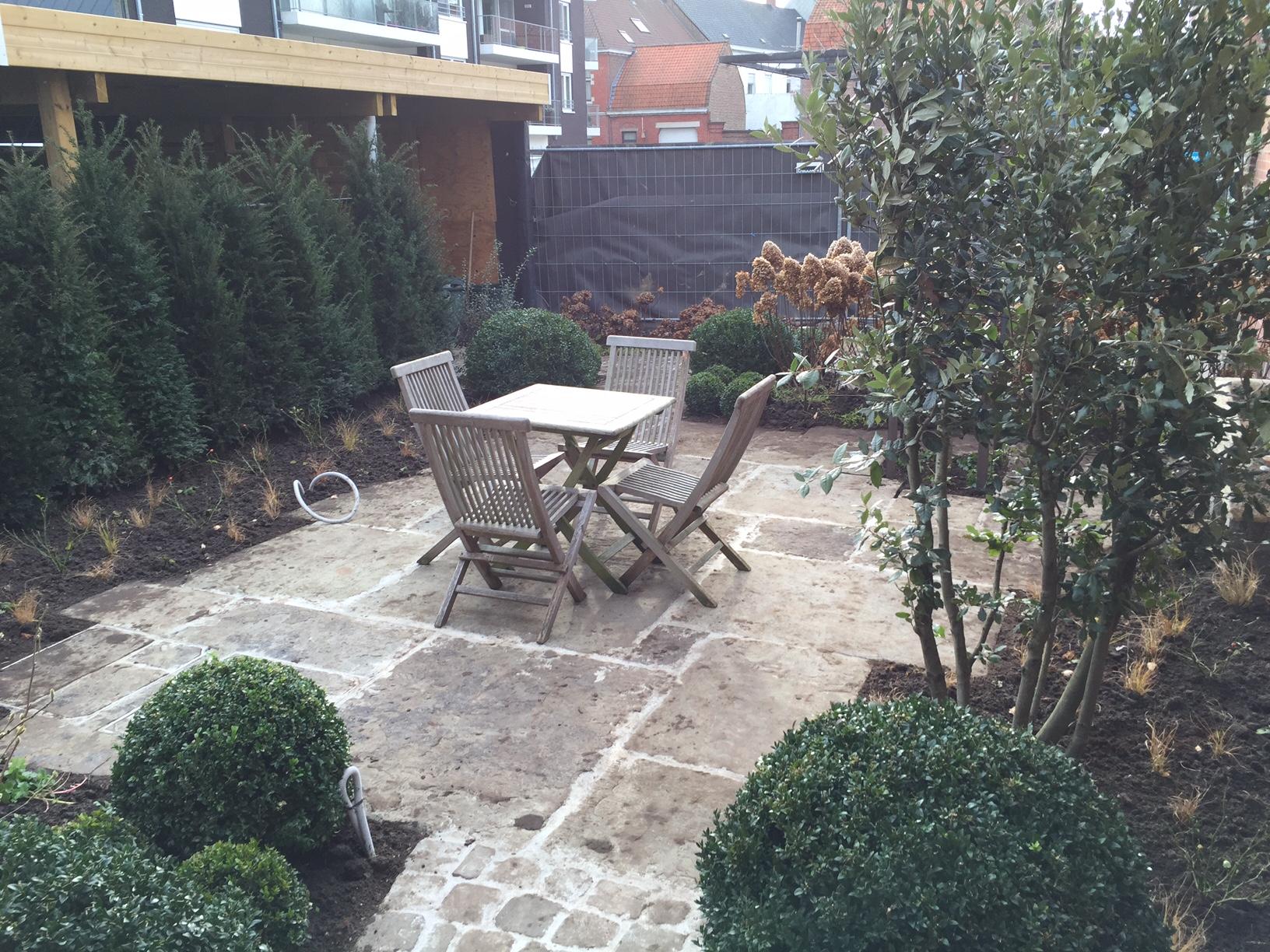 Aanleg tuin Avelgem (4)