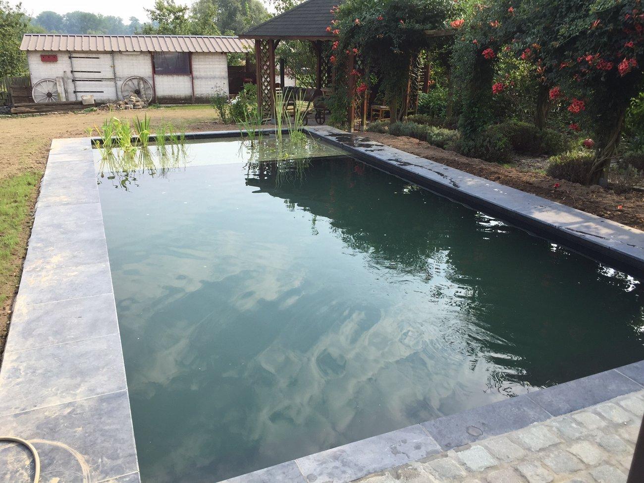 Vijvers - Zwemvijvers Kortrijk