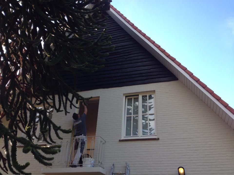 schilderwerk villa & dakreiniging