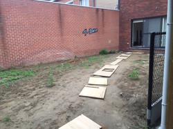 Aanleg tuin Avelgem (5)