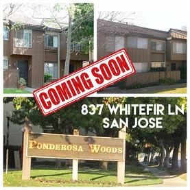 Coming Soon 831 Whitefir Ln San Jose