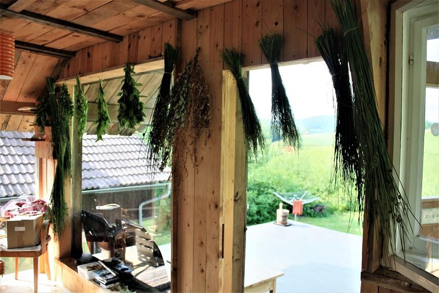 so hängen meine Kräuter im Wintergarten