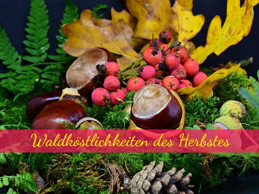 Bunte Herbstfrüchte