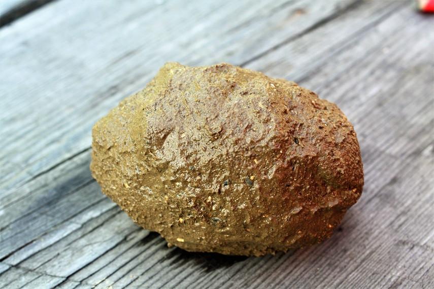 So wird der Kartoffel in die Glut gelegt
