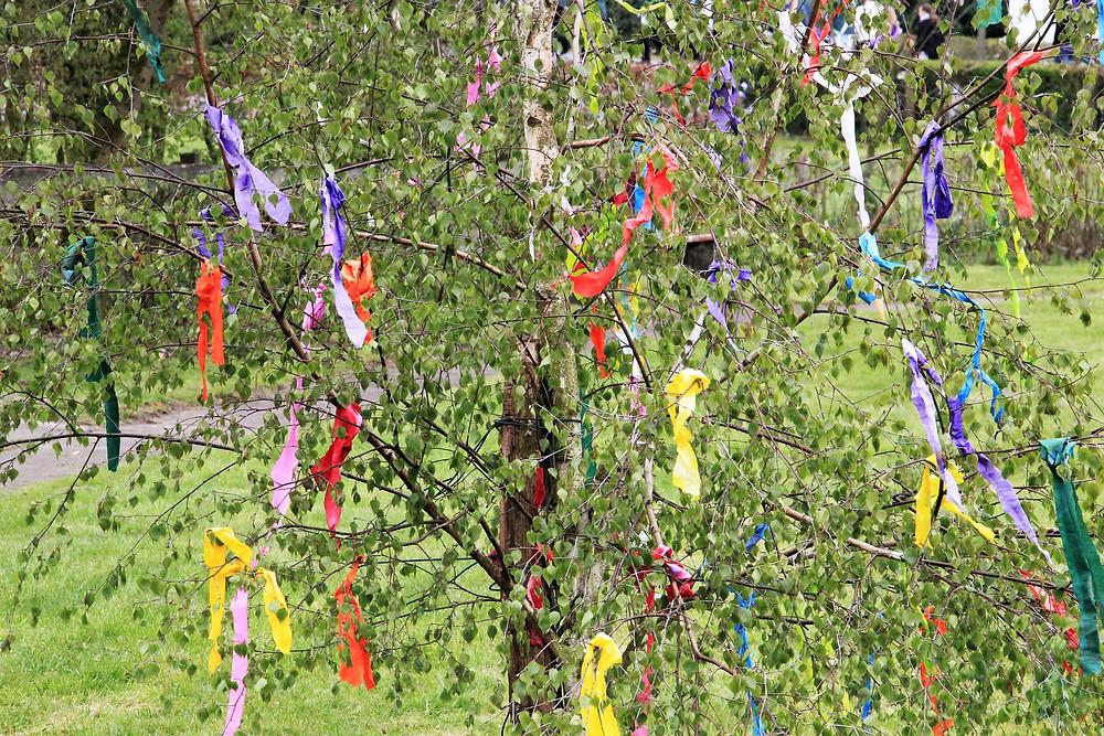 Die Birke war Sinnbild des Fruchtbarkeitsfestes