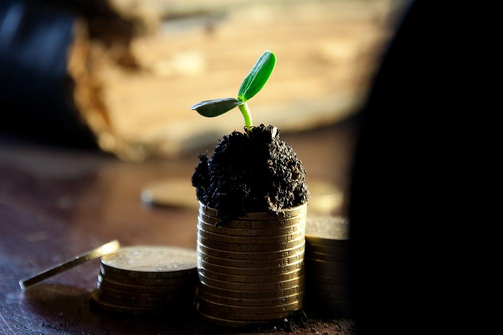 Faire und grüne Banken für ein Gemeinwohl