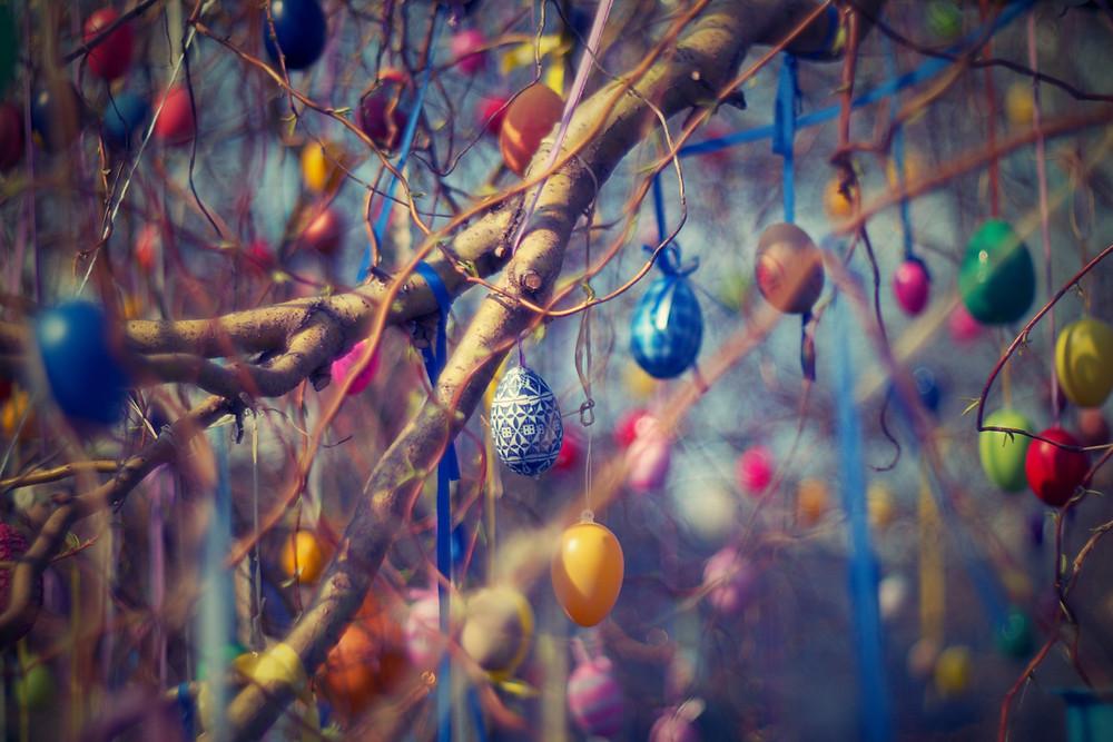 Sträucher werden mit bunten Eiern geschmückt