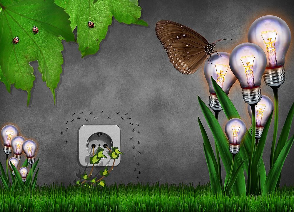 Ökologischer Strom