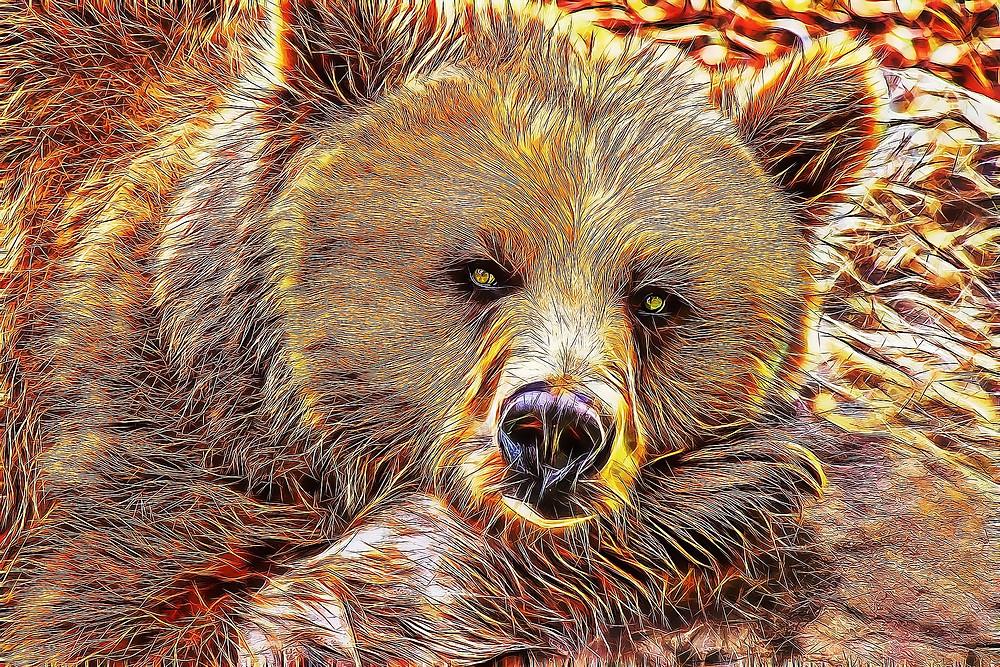 Sinnbild der Winterruhe der Bär