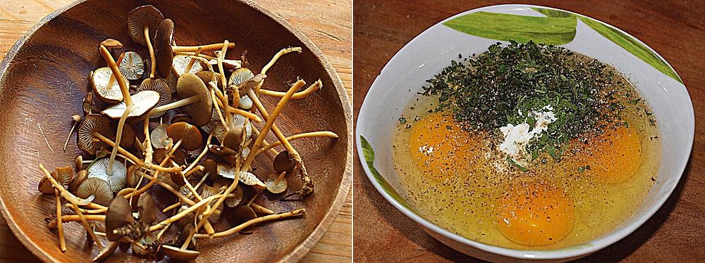 li: die geputzten Pilze - re: Eier mit Sauerrahm und Gewürzen vermengen