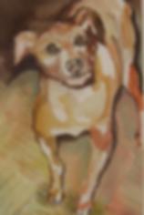 Watercolor/Dog Portraits/Karen Westheimer/Graphic Artist