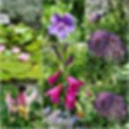 Margaret1Photo3152020.jpg