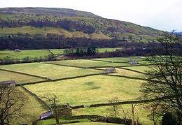 Yorkshire dry stone walling ian layfield 1