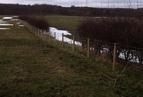 ilkley fencing 3