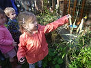 plant life at abacus nursery in ilkley