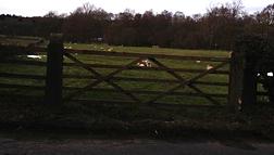 farm gates ilkley yorkshire