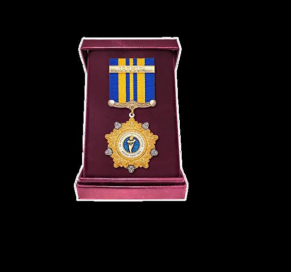 Медаль за профессиональный вклад.png