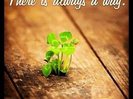Resilienza: quando la vita diventa insegnamento