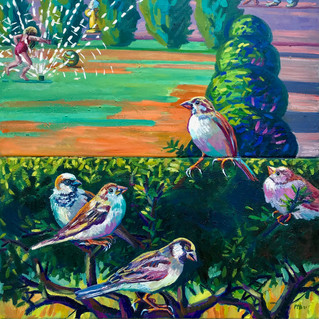 Sparrows in Summer Yews | 2021 oil