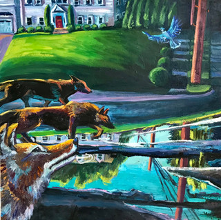 Coyotes Descent on Suburbia | 2020 oil