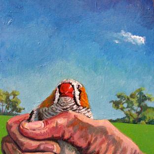 Bird in Hand   2018 Paula Pitman Brown SOLD