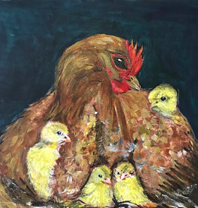 Chicken with Chicks