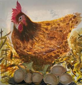 chicken withs eggs
