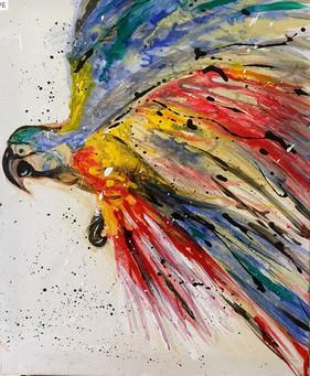 Parrot in Flight 2