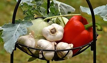 vegetables-3483066__340.webp