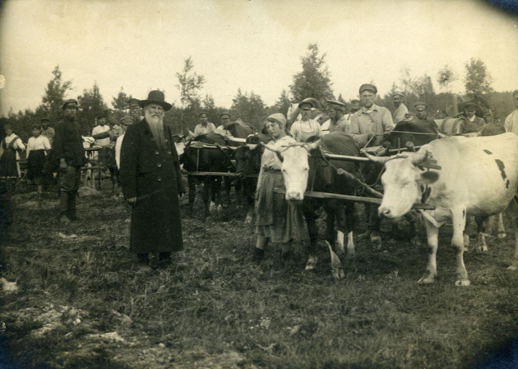 Коммуна Б.И.Ч. в Вырице 1918-1929гг.