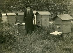 Июнь 1921 год