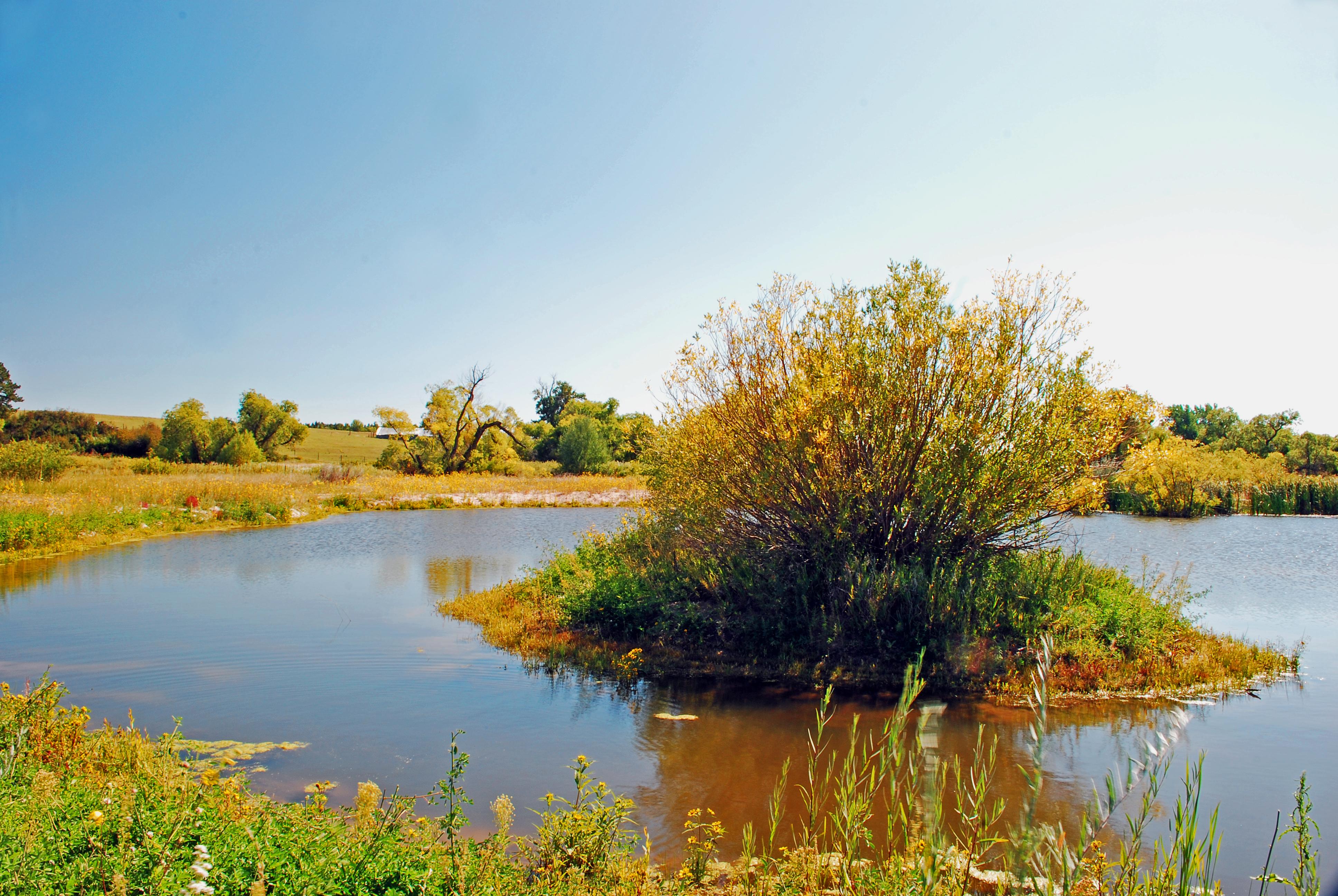 Ranch with Ponds Colorado