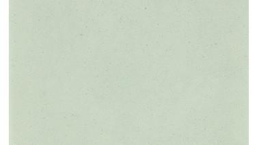 C045 | Iceberg Mint