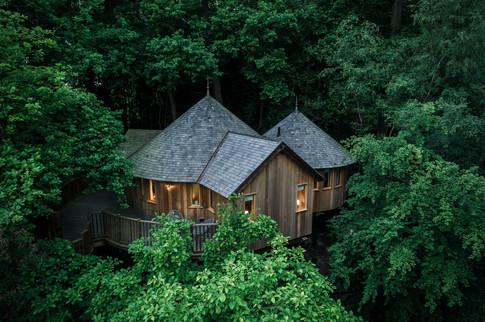 The Buzzardry treehouse