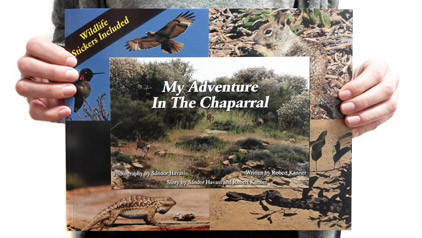 chaparral_web1.jpg