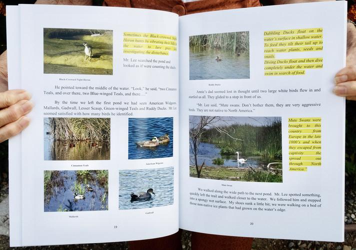 Wetlands-Interior1_web.jpg