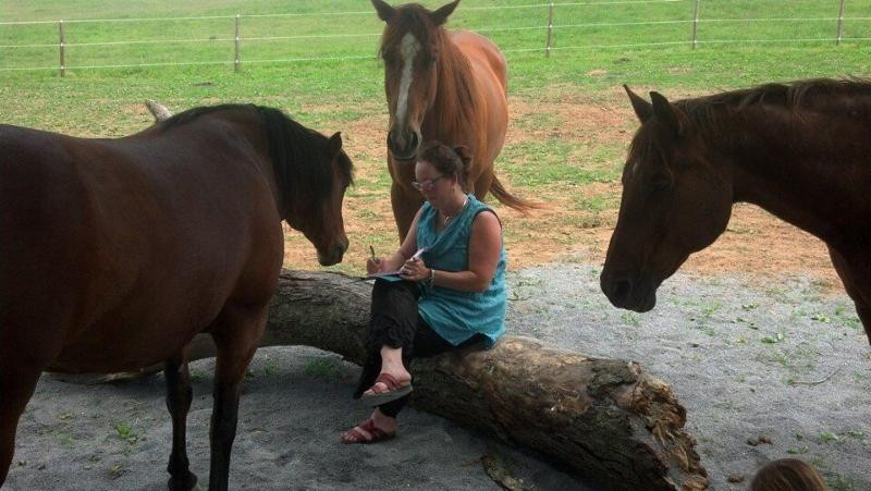 Parker surrounded by a herd of healing horses in Maryland