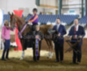 Lalille Nationals picture with saddle.JP