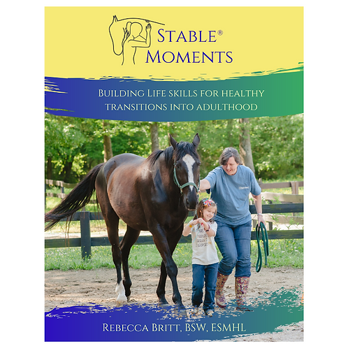 Stable Moments Book