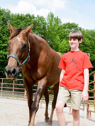 equine assisted learnig, life skills, fostercare, adoption, trauma, mentor, mentorship